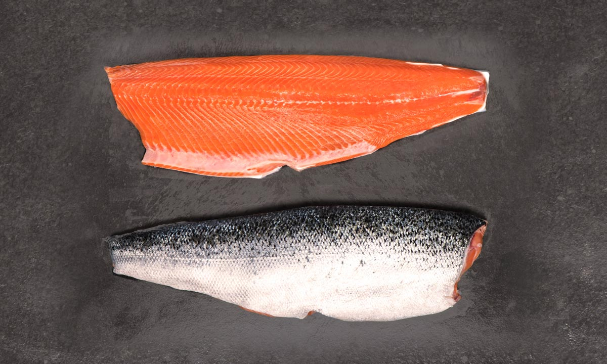 salmón de exportación Invermar, Atlantic salmon from chile